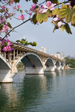 Arch bridge in spring Stock Photos