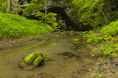 Arch Cave In Spring. A cave like arch in the woods during spring with a creek Royalty Free Stock Image