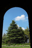 Arch and Cedar. A Cedar of the Lord (Cedrus Libani) at the Beiteddine palace garden viewed through an Arch. Lebanon Royalty Free Stock Photos