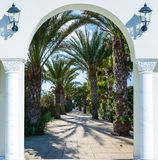 Arch door on the palm alley. Open doorway arch door on the alley of palm trees on a sunny summer day Stock Images