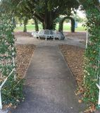 Arch flowers. Arching tree bench Stock Photo