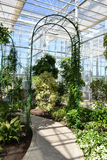 Arch in a Greenhouse. Beautiful terrace full with flower pots in a Botanical Garden Stock Photography