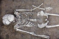 Arch?ologische Aush?hlungen Skelett der menschlichen ?berreste mit dem Sch?del ist im Boden halb Baggerproze? der wirklichen Wiss stockfotografie