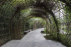 The arch and the path in the park. Bamboo to build the tunnel, green plants and benches Royalty Free Stock Photography