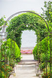 Arch plants. Way to the sea Royalty Free Stock Photos