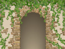 Arch of stones and hanging ivy. Entrance to the cave or cellar wreathed with  vines. (vector texture of stone contains elements auto-tracing Royalty Free Stock Photos