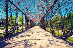 An arch view in garden at Schonbrunn Palace in Vienna Stock Images