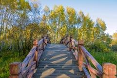 Arch wooden bridge Stock Image