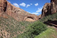 Arch in Zion National Park. Arch in a cliff in zion national park with the road on the left Stock Images