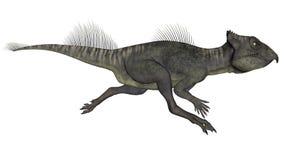 Archaeoceratops dinosaur - 3D render. Archaeoceratops dinosaur running isolated in white background - 3D render vector illustration