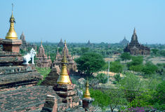 archaeological bagan burma myanmar zon Arkivbild