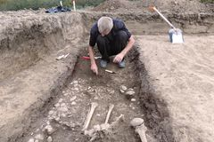 Archaeological excavation. The archaeologist in a digger process, researching the tomb, human bones, part of skeleton and skull in. The ground. Hands with tools stock photography