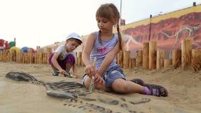 Archaeological excavation of dinosaur bones stock video footage