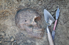 Archaeological excavation with skeletons Stock Photography