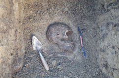 Archaeological excavation with skeletons Royalty Free Stock Photo