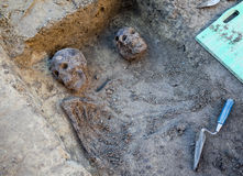 Archaeological excavation with skeletons Stock Image