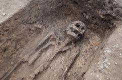 Archaeological excavation with skeletons. And skulls still half buried in the ground Royalty Free Stock Photos