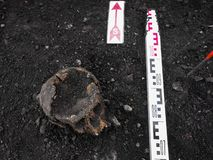 Archaeological excavation with skull still half buried in the ground and tools lying beside royalty free stock photo