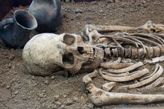 Archaeological excavations of an ancient human skeleton and human skull. Archaeological excavations of an ancient human homo sapiens man reasonable Neanderthal Stock Photo