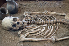 Archaeological excavations of an ancient human skeleton and human skull stock images