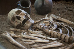 Archaeological excavations of an ancient human skeleton and human skull. Archaeological excavations of an ancient human homo sapiens man reasonable Neanderthal Royalty Free Stock Images