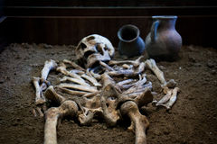 Archaeological excavations of an ancient human skeleton and human skull. Archaeological excavations of an ancient human homo sapiens man reasonable Neanderthal Stock Photos