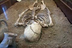 Archaeological excavations of an ancient human skeleton and human skull. Archaeological excavations of an ancient human homo sapiens man reasonable Neanderthal Royalty Free Stock Photo