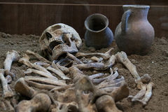 Archaeological excavations of an ancient human skeleton and human skull. Archaeological excavations of an ancient human homo sapiens man reasonable Neanderthal Royalty Free Stock Image