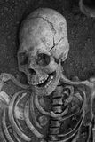 Archaeological excavations of an ancient human skeleton and human skull royalty free stock images