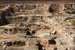 Archaeological excavations Stock Images