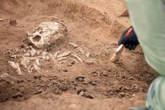 Archaeological excavations. The archaeologist in a digger process. Close up hands with brush conducting research on human bones, p stock image