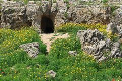 Archaeological excavations in Cyprus, Paphos. Royalty Free Stock Photography