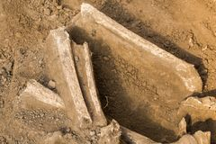 Archaeological excavations and finds bones of a skeleton in a human burial, a detail of ancient research, prehistory.  stock photos