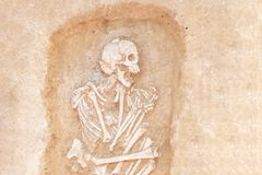 Archaeological excavations man and finds bones of a skeleton in a human burial, a detail of ancient research, prehistory.  royalty free stock photo