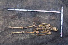 Archaeological excavations man and finds bones of a skeleton in a human burial; working tool; ruler; a detail of ancient researc. H; prehistory stock images