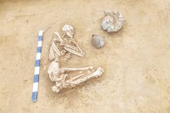 Archaeological excavations man and finds bones of a skeleton in a human burial, working tool, ruler, a detail of ancient resear. Ch, prehistory stock photography