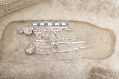 Archaeological excavations man and finds bones of a skeleton in a human burial, working tool, ruler, a detail of ancient resear. Ch, prehistory. Pair Double royalty free stock photography
