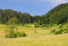 Archaeological locality of Havranok, Slovakia stock images