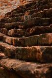 archaeological lokal Arkivfoto