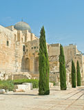Archaeological park at Jerusalem Royalty Free Stock Photos