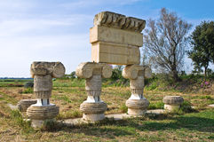 Archaeological Park. Metaponto. Basilicata. Italy. Stock Images