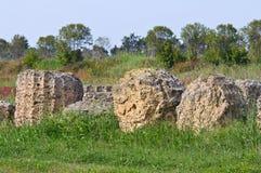 Archaeological Park. Metaponto. Basilicata. Italy. Royalty Free Stock Photos