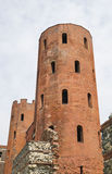 Archaeological Park with Palatine towers,Turin Royalty Free Stock Photography
