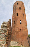 Archaeological Park with Palatine towers,Turin Royalty Free Stock Images