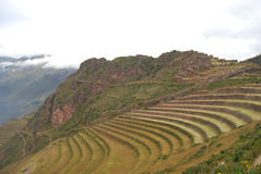 Archaeological Park of Pisac Stock Image