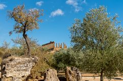 Archaeological Park of the Valley of the Temples in Agrigento, Sicily Royalty Free Stock Image