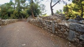 Archaeological reconstruction of the ancient wall and coniferous trees in the ruins of the city`s antiquity in the mountains in th. Ruins of the ancient city of stock video