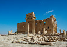 Archaeological ruins of the beautiful city of Palmyra Stock Images