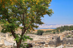 Overview of the Archaeological Ruins of the Ancient City of Beit She`an located in Israel Royalty Free Stock Image