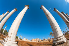 Archaeological site of ancient Salamis city. Famagusta district. Cyprus Royalty Free Stock Photo